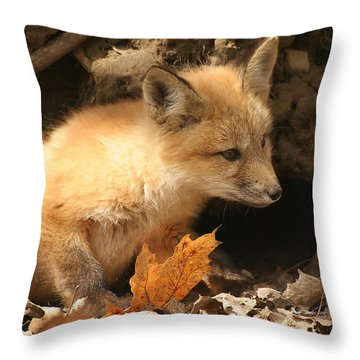 Throw Pillow featuring the photograph Fox Kit At Entrance To Den by Doris Potter