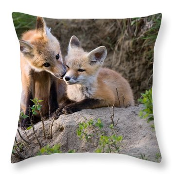 Fox Kits Canada Throw Pillow by Mark Duffy