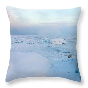 Throw Pillow featuring the photograph Fox Of The North I by Mary Amerman