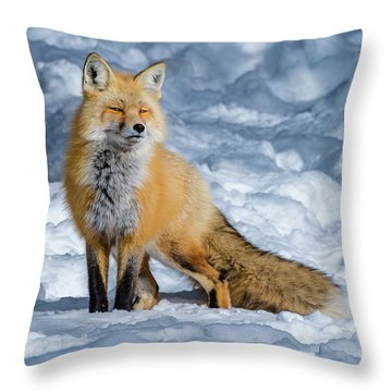 Fox On A Winter Afternoon Throw Pillow
