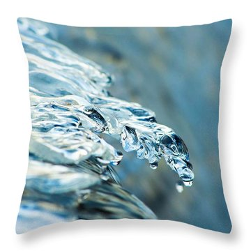 Fox River 03 Throw Pillow