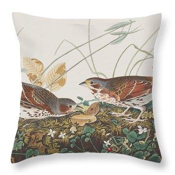 Fox Sparrow Throw Pillow by John James Audubon