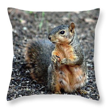 Fox Squirrel Breakfast Throw Pillow