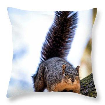 Fox Squirrel On Alert Throw Pillow by Onyonet  Photo Studios
