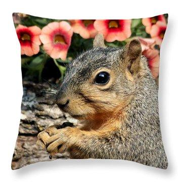 Fox Squirrel Portrait Throw Pillow