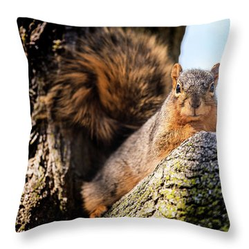 Throw Pillow featuring the photograph Fox Squirrel Watching Me by Onyonet  Photo Studios