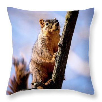 Fox Squirrel's Last Look Throw Pillow
