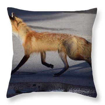 Fox Trot Throw Pillow by Johanne Peale