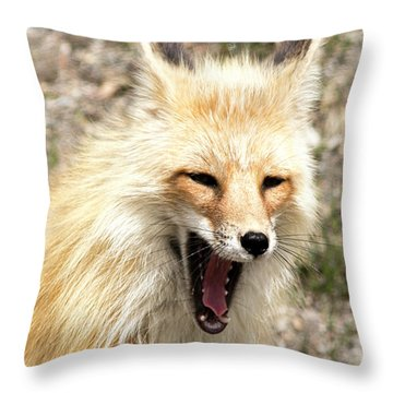 Fox Yawn Throw Pillow