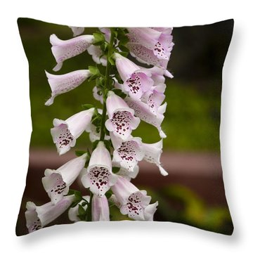 Foxglove At The Getty - Digitalis Throw Pillow