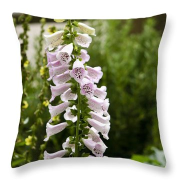Foxglove At The Getty Throw Pillow