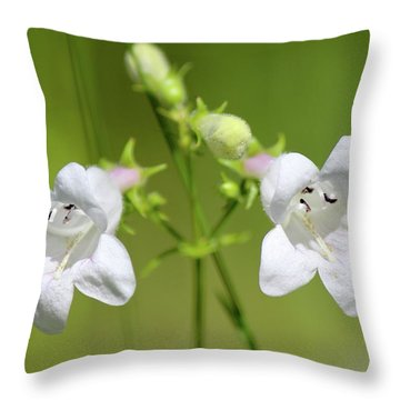 Foxglove Beardtongue Throw Pillow