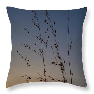 Foxtail Sunset Throw Pillow
