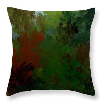 Fractal Landscape 11-21-09 Throw Pillow by David Lane