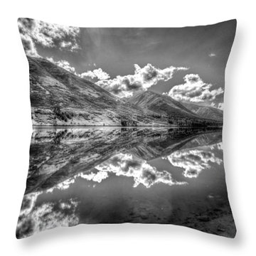 Fractal Reflections Throw Pillow