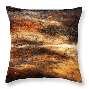 Throw Pillow featuring the photograph Fractured by Ryan Manuel