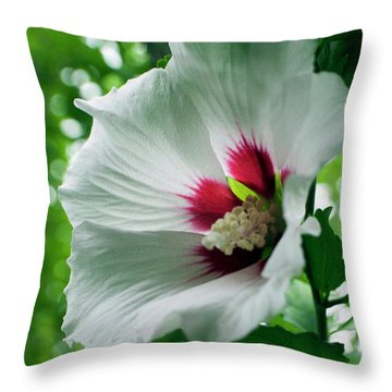 Fragile Beauty Throw Pillow