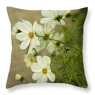 Fragile Cosmos Throw Pillow