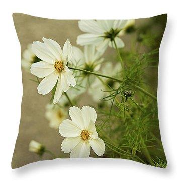 Fragile Cosmos Throw Pillow