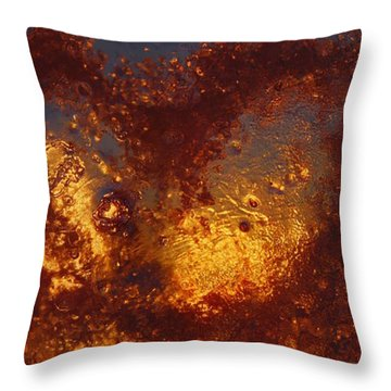 Throw Pillow featuring the photograph Fragile Love by Sami Tiainen