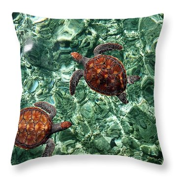 Fragile Underwater World. Sea Turtles In A Crystal Water. Maldives Throw Pillow