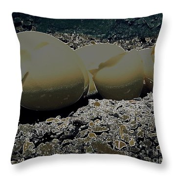 Throw Pillow featuring the photograph Fragile Waters by Kristine Nora