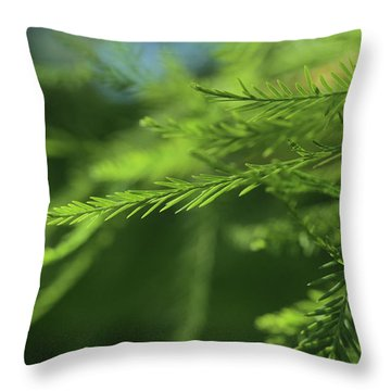Throw Pillow featuring the photograph Fragments Of Time  by Connie Handscomb