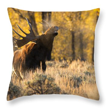The Scent Throw Pillow by Aaron Whittemore