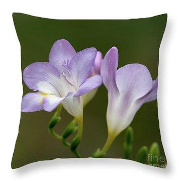 Fragrant Freesias 2 Throw Pillow