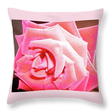 Throw Pillow featuring the photograph Fragrant Rose by Marie Hicks