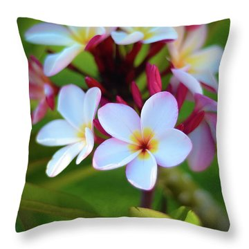Throw Pillow featuring the photograph Fragrant Sunset by Kelly Wade