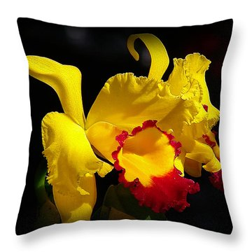 Throw Pillow featuring the photograph Fragrant Sunshine by Blair Wainman