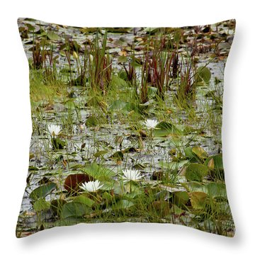 Fragrant White Throw Pillow by Susan Cole Kelly