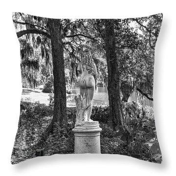 Throw Pillow featuring the photograph Framed by Alan Raasch