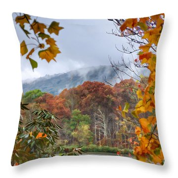 Framed By Fall Throw Pillow