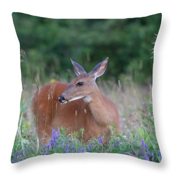 Framed By Flowers Throw Pillow
