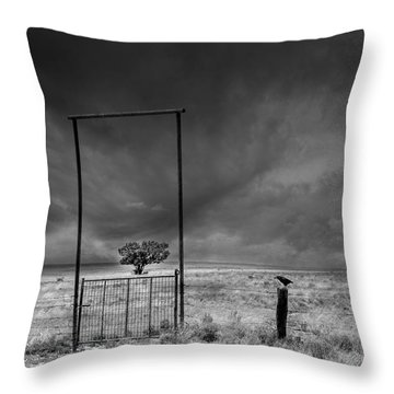 Framed Throw Pillow by Carolyn Dalessandro