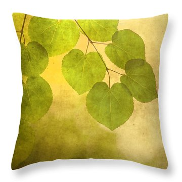 Framed In Light Throw Pillow