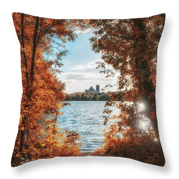 Framed Throw Pillow