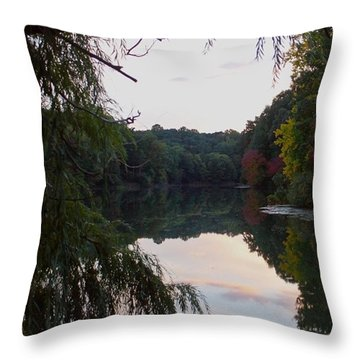 Framed Lake Reflection  Throw Pillow