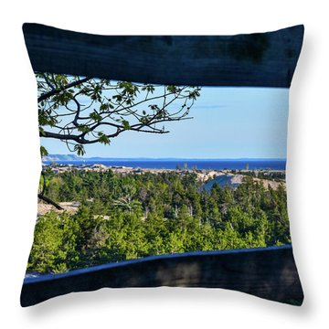 Framed View Throw Pillow