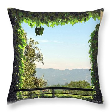 Throw Pillow featuring the photograph Framing Napa Valley by Joan  Minchak