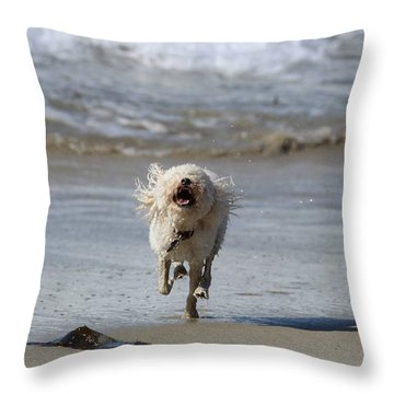 Francis Frockling In The Surf Throw Pillow