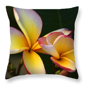 Frangipani Flowers Throw Pillow
