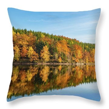 Frankenteich, Harz Throw Pillow