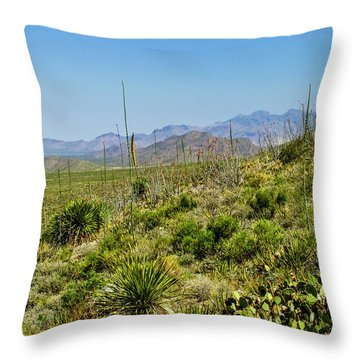 Franklin Mountains State Park Facing North Throw Pillow
