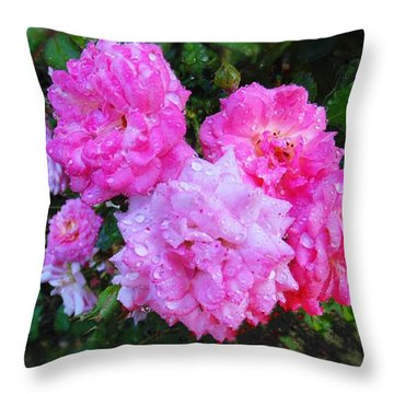 Frank's Roses Throw Pillow by MaryLee Parker