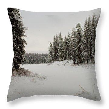 Frater Lake Throw Pillow