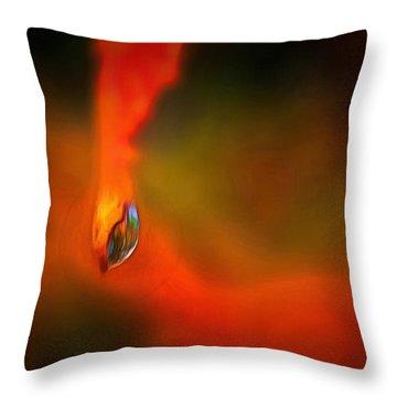 Freddy Fender Throw Pillow by Trish Tritz