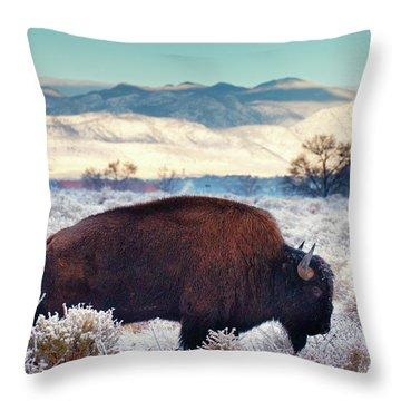 Free To Roam Throw Pillow by John De Bord
